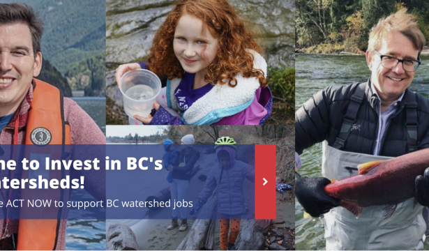 Add Your Voice: Campaign for Matching Federal Funding for Watershed Sustainability